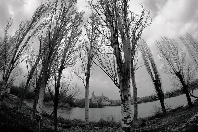 El río Tormes (Salamanca)