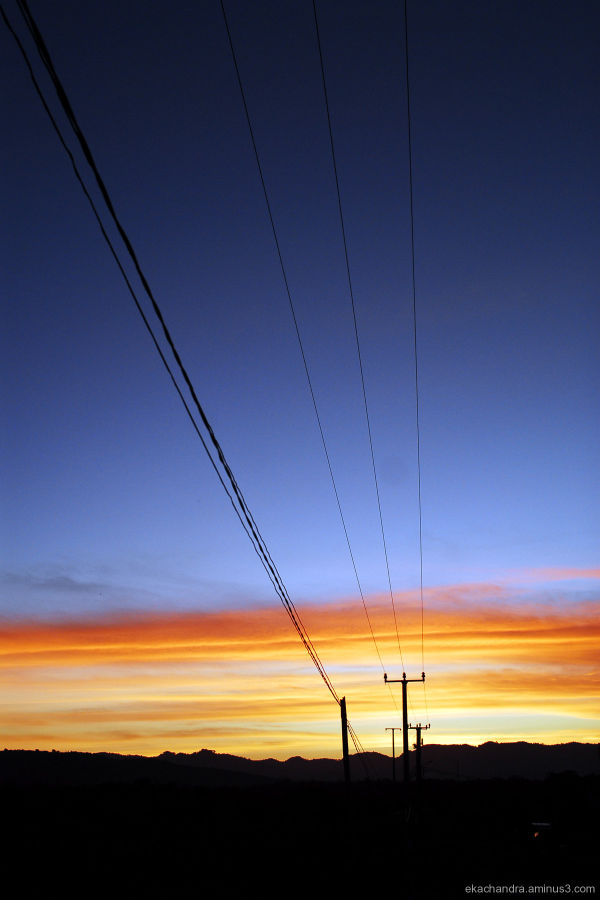 pilars of electricity wire