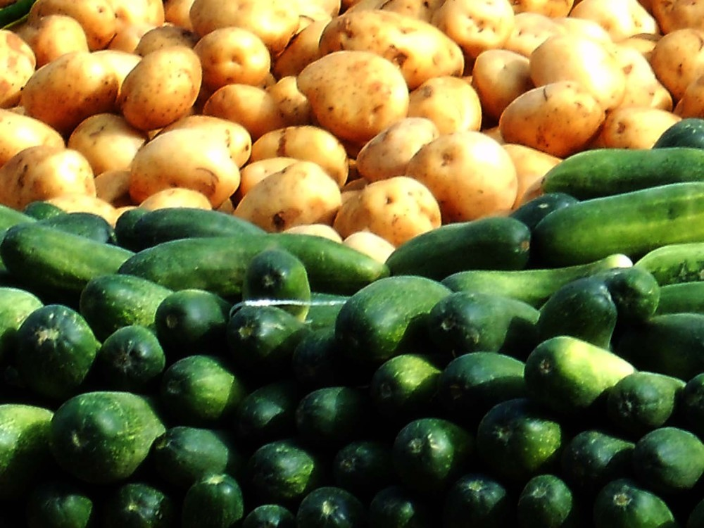 Potatoes and Cucumbers, Jaipur, India