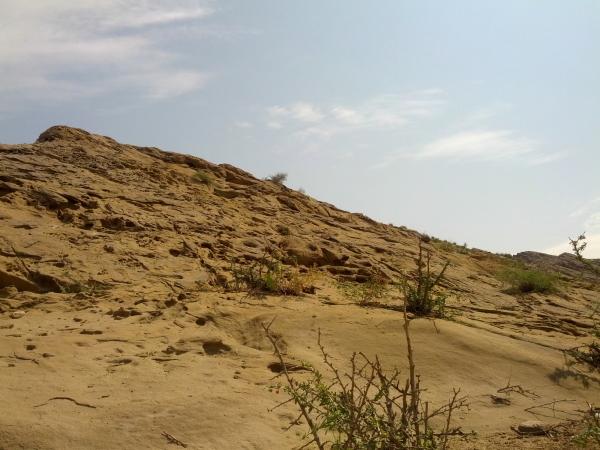 Fridays of Geology 22