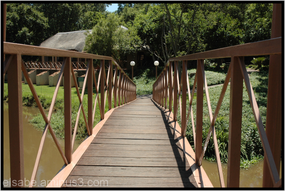 bridge,walkway,South-Africa
