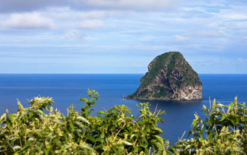 Le diamant de la Martinique (The diamond)