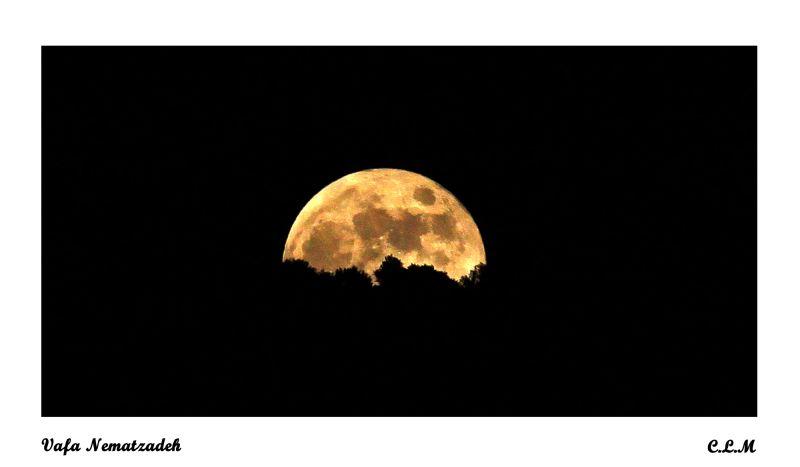 Moonrise Over the Black Jungle.Iran Night Sky