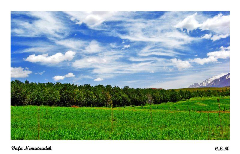 Alamoot Area.Iran
