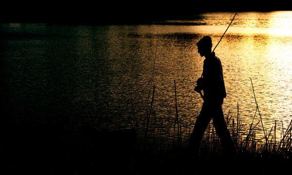 Pinocchio,Sunset,Lake