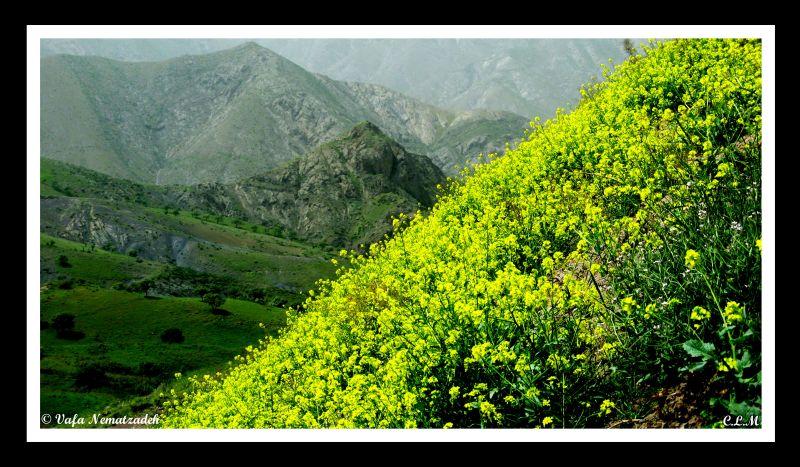 God's Painting!!Iran