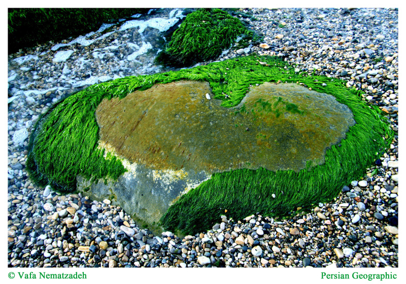 Green Stone Heart !