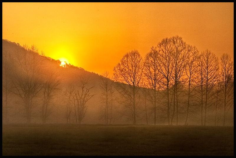 sun breaks through the early morning mist