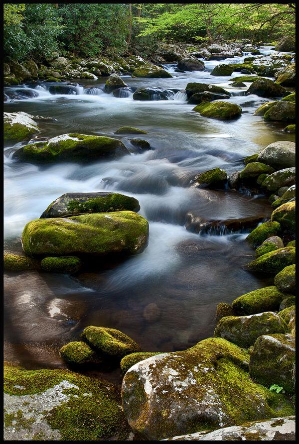 stream rocks moss spring