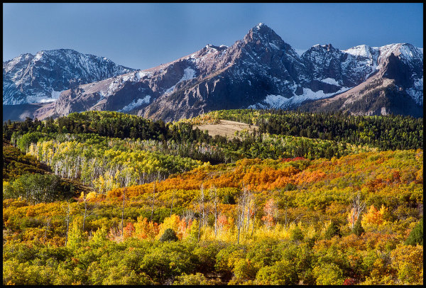 San Juan Mts. fall color