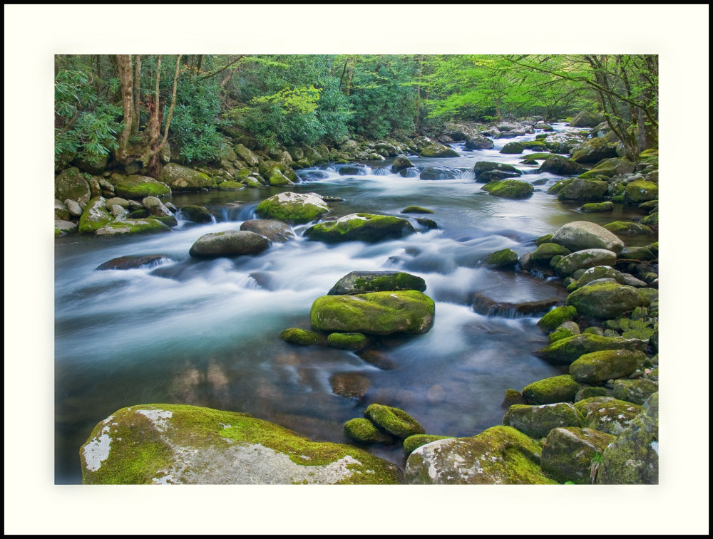 Spring flow in a mountain stream