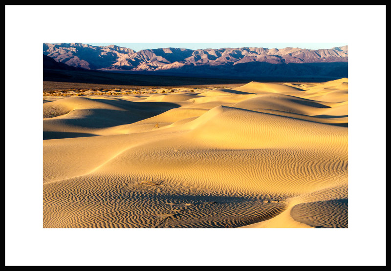 Mesquite Dunes Death Valley,CA