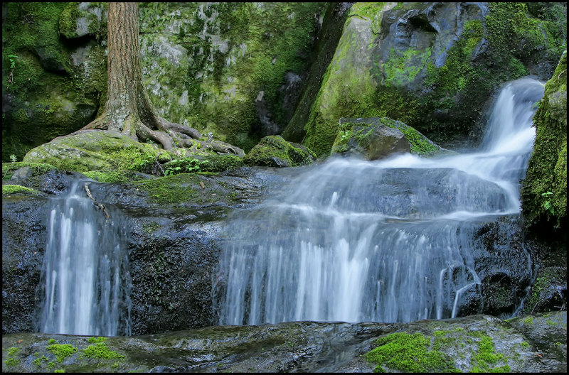 Water Fall in The Smoky Mountains