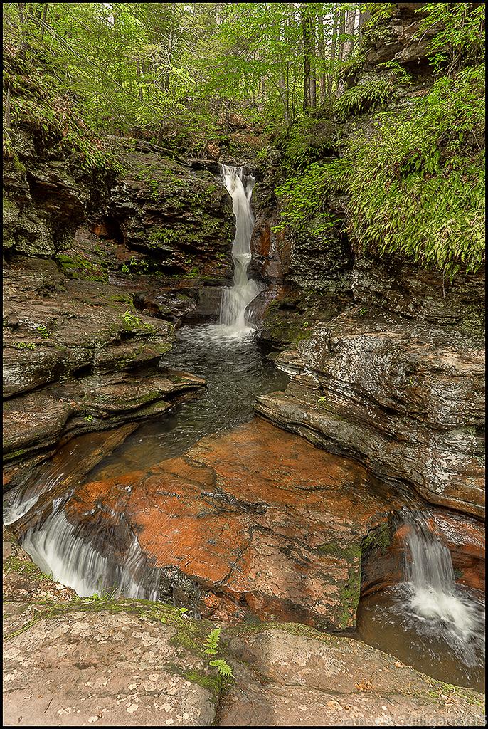 water fall in Ricketts Glen