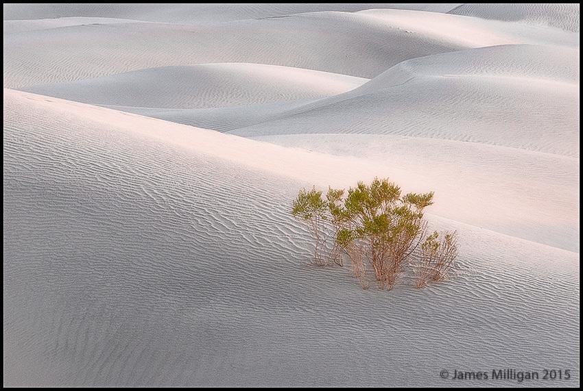 Death Valley at Dawn