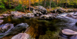 A small stream in the Smokies