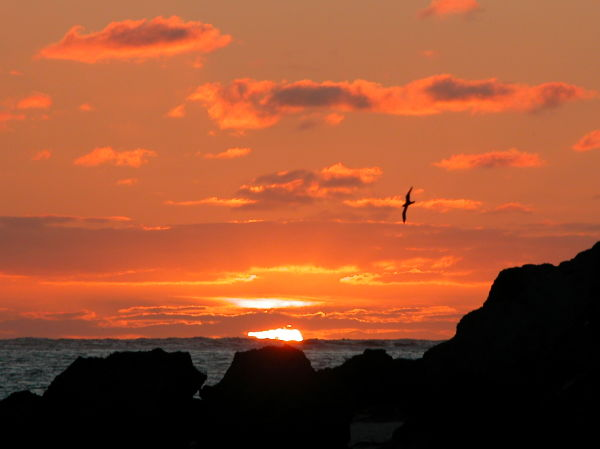 Lord Howe Island Sunset