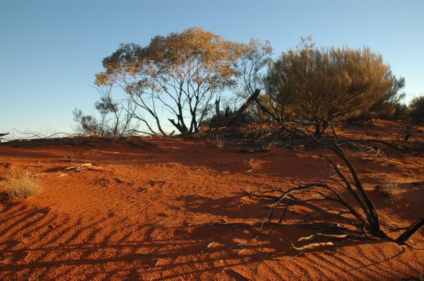 Central Australia #5
