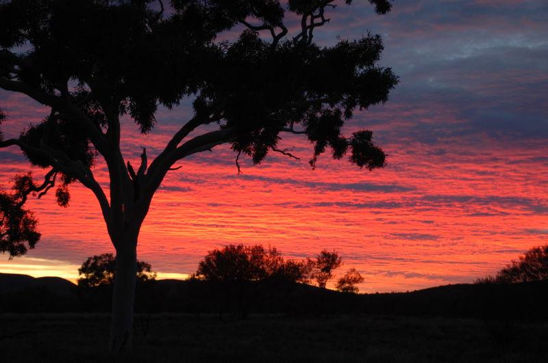 Central Australia #17