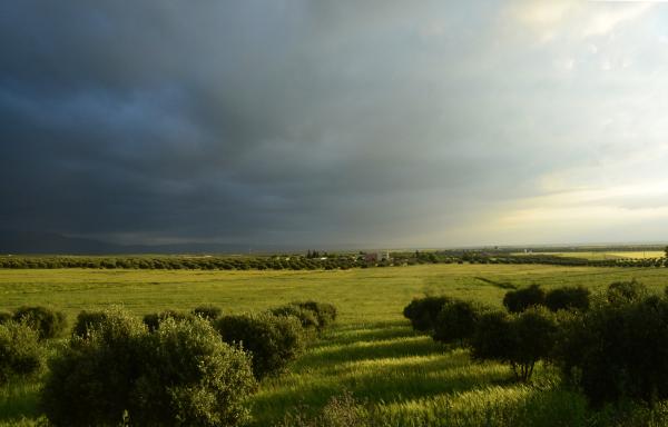 paysage rêveur