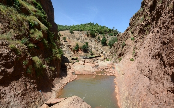 les sources d'oumou rabii à l'atlas marocain