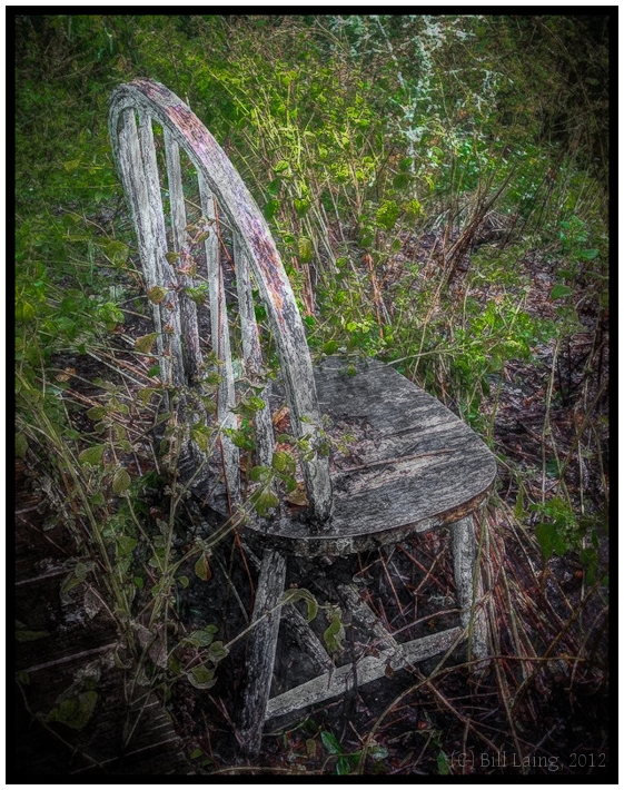 Chair in the Weeds