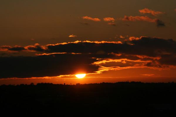 Mansfield Sun Drop