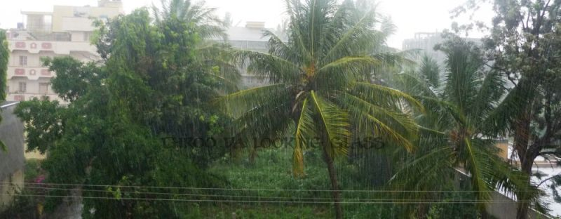 The sight of rain is always cheerful
