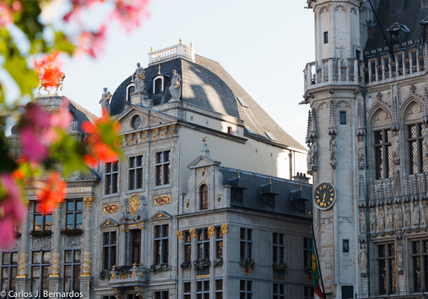 Brussels square with building in focus