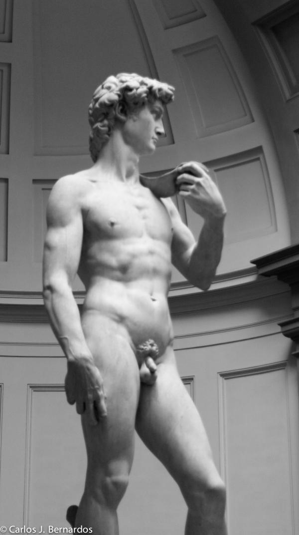 Florence sculpture david