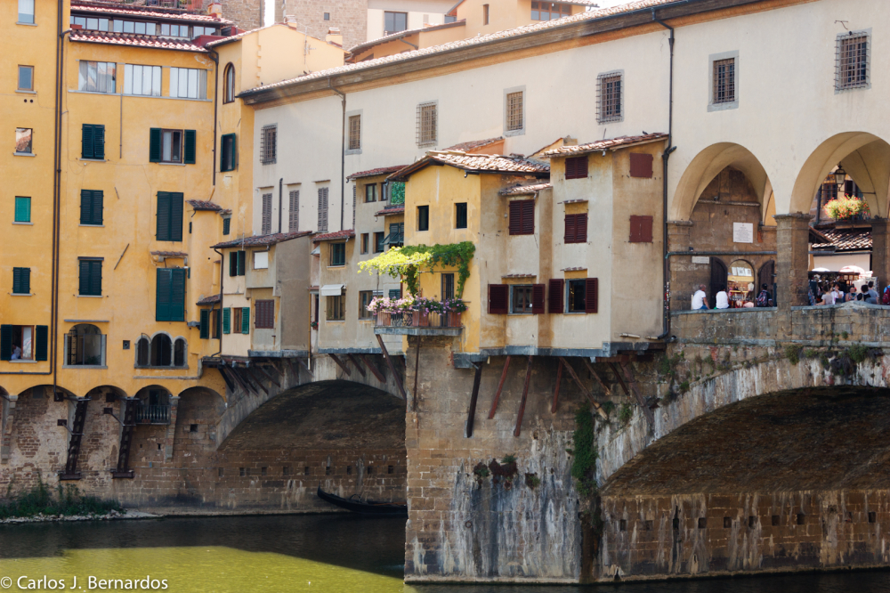 Florence: houses by the river