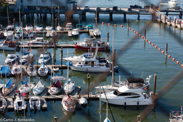 Vancouver port boats