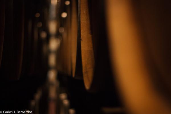 Oak barrels (Protos winery)