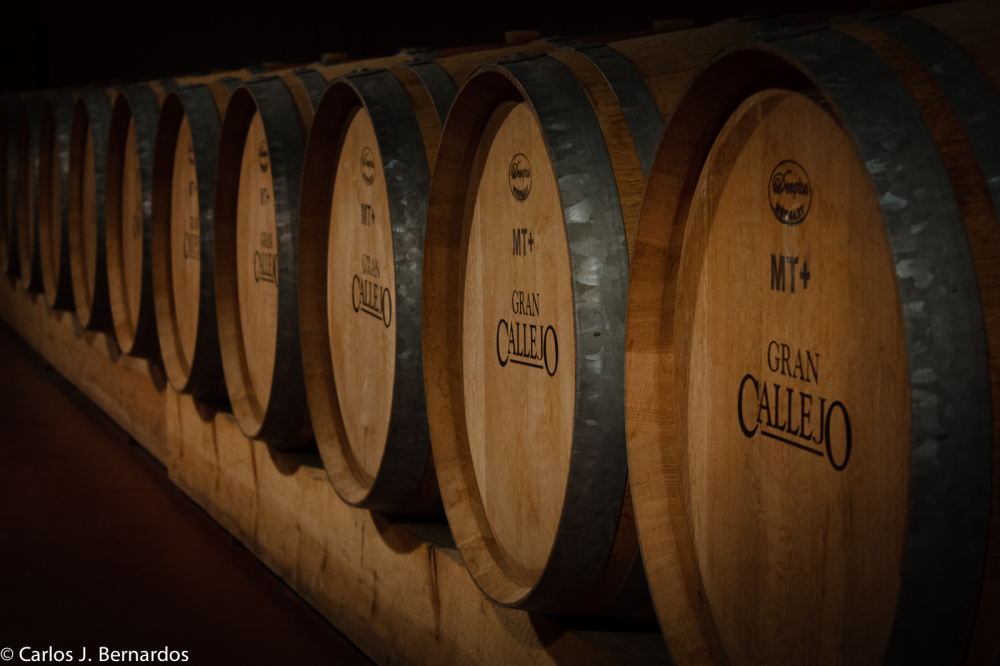 Oak barrels (Callejo winery)