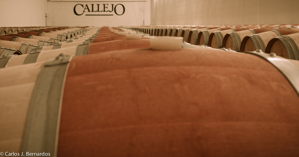Oak barrels (Callejo winery)
