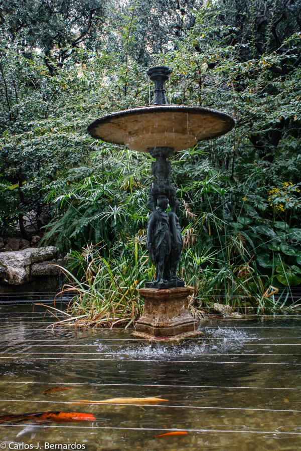 Fountain at Montecarlo