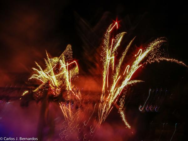 Fireworks in Disney park (Orlando)