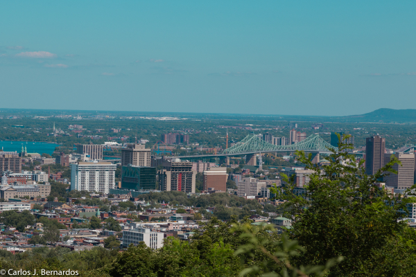 Montreal skyline from Mont Royal