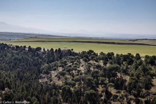 Trip to Segovia