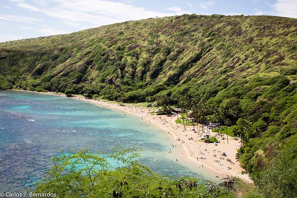 Trip to Honolulu