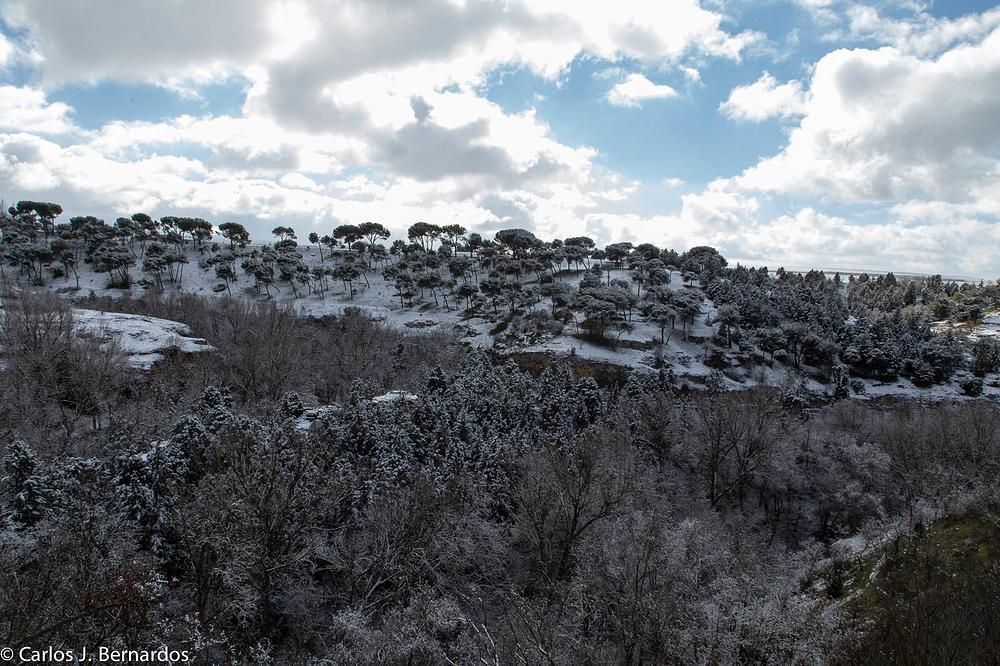 Trip to La Granja, Segovia