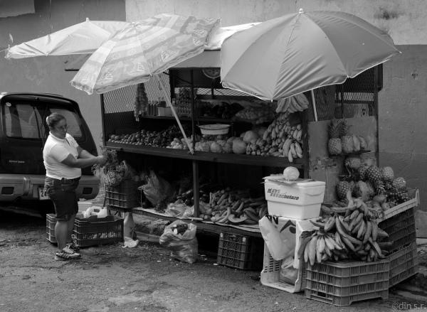 Fruta en La Central
