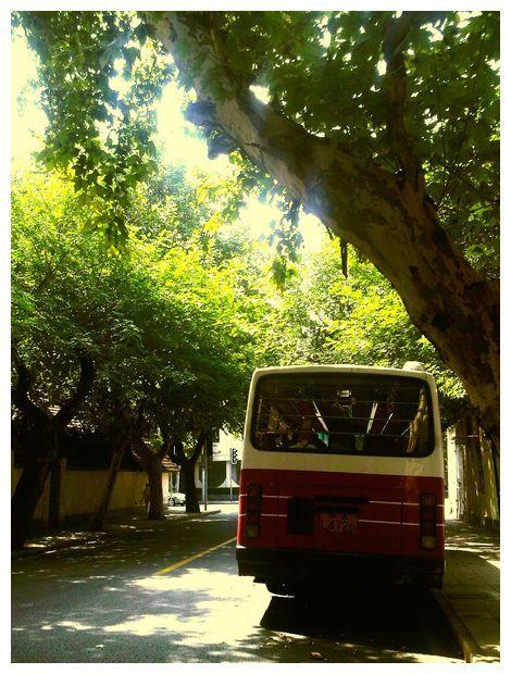 Sunshine on the road #2