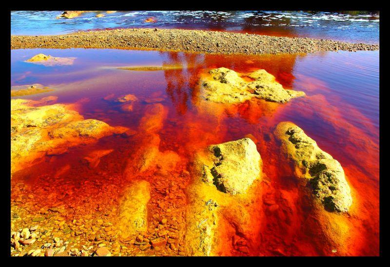 Orilla en el río Tinto