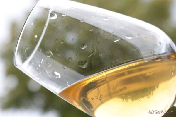 verre de jus de raisin de Muscadet filtré