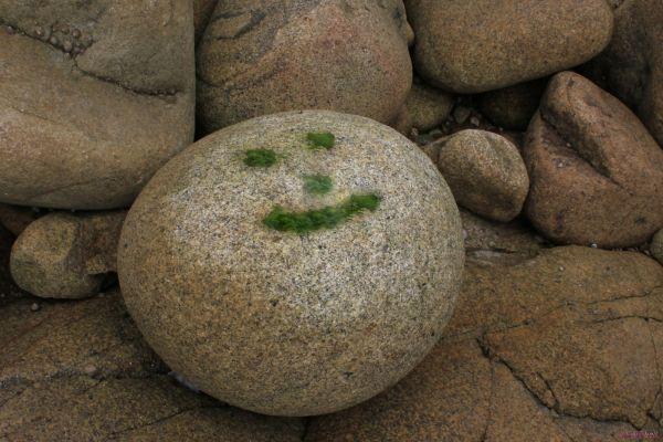 pierre dans les rochers