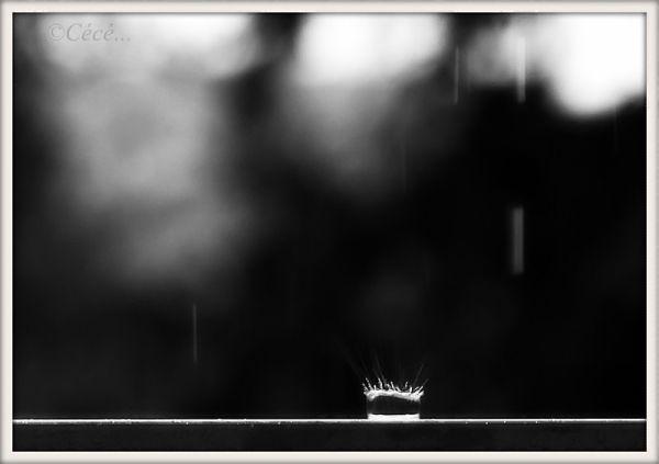 ...et plouf...il pleut!!....
