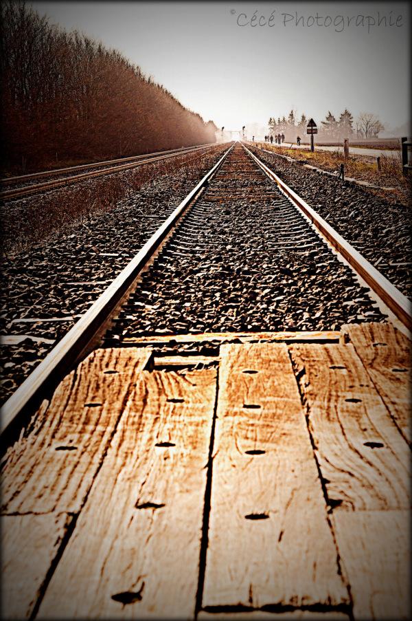 ...pas de train à l'horizon...