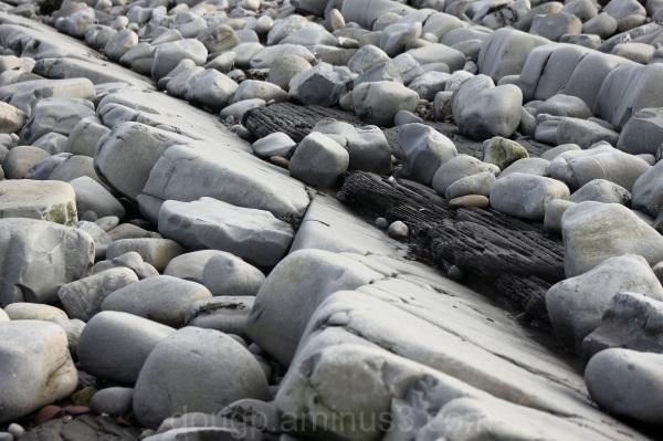 Kilve rocks