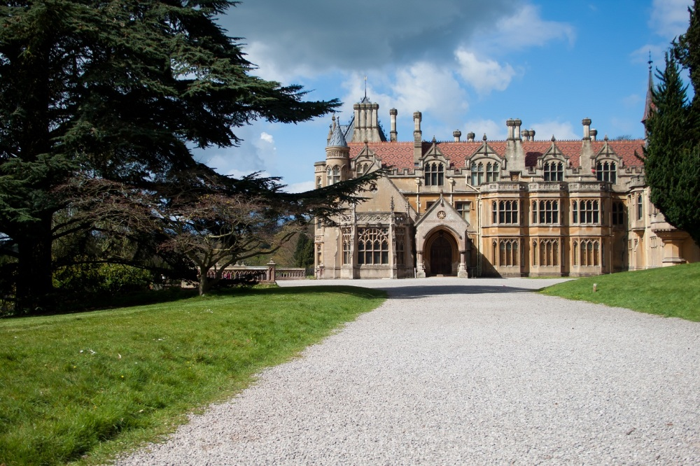 Tyntesfield 2 of 4